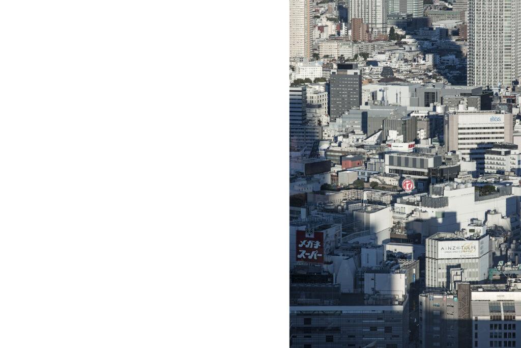 Tokyo view, skycreapers, Shinjuku, Tokyo street photography