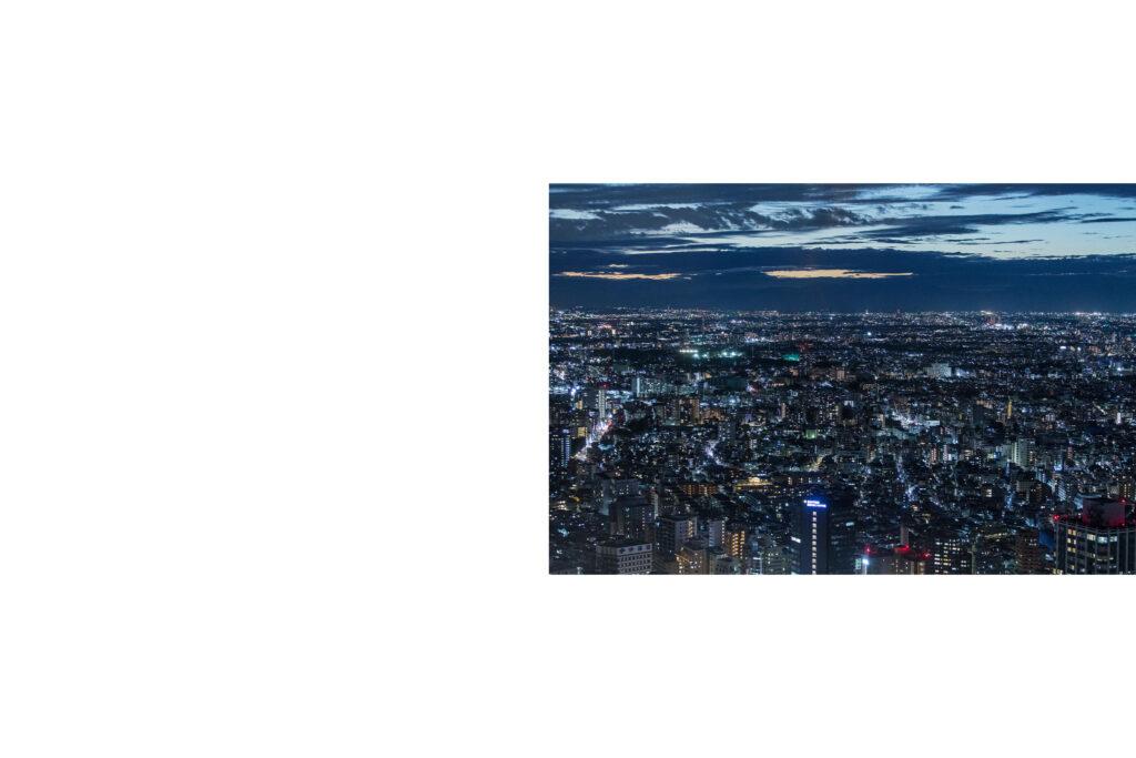 Tokyo night view, Tokyo nightlights, skycrapers, Tokyo skyline, Shinjuku, Tokyo street photography